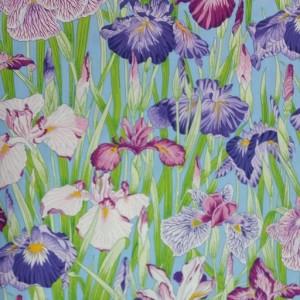 Japanese Irises - Serene