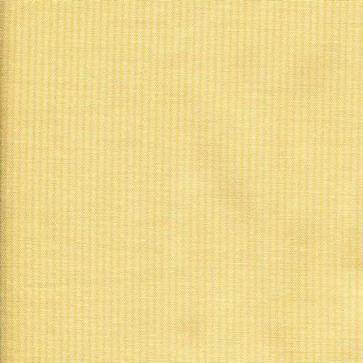 Pinstripe - Yellow