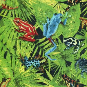 Frogs and Leaves - Multi