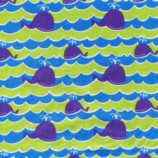 Whales - Ocean