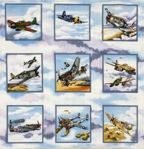 Warbirds Panel