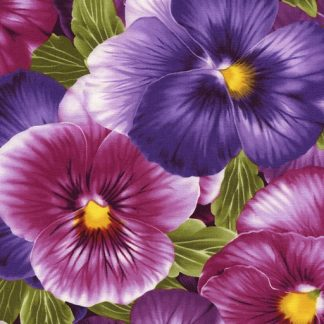 Large Packed Pansies - Purple