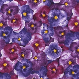 Viola - Packed Pansies