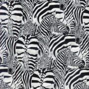 Zebra - Black and White 85870-101