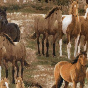 Four Seasons Horses - Brown K14008-81