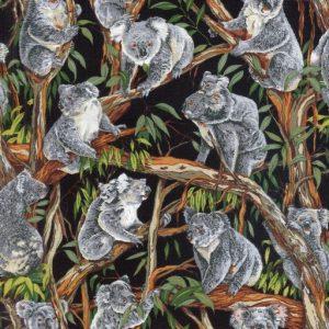 Koalas - Black
