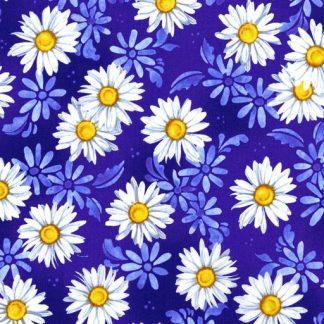 Daisy Dance - Delft 2944-1
