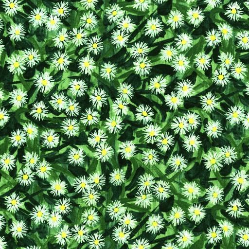 Flowering Field - English Ivy 2945-1