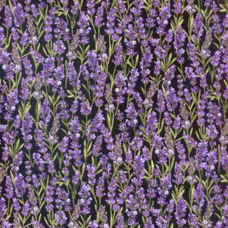 Lavender Market 2 - Black 20752-99