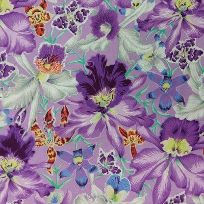 Orchids PWPJ092-COOL