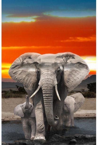 Wild Safari Panel Q4495-670-Elephant