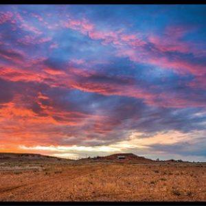 Australian Photography Panel DV535