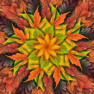 Dream Big Leaf Panel – Autumn