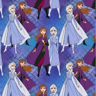 Elsa and Anna Together - Multi 39640-107