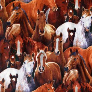 Farm Animals 433-BLACK