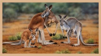 Wildlife Art 3 Panel DV3185