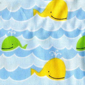 Whales PWDW075-Coast