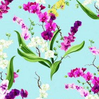 Orchid Fancy Y2946-32 Light Aqua